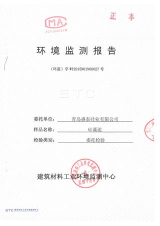 环境监测报告2-1