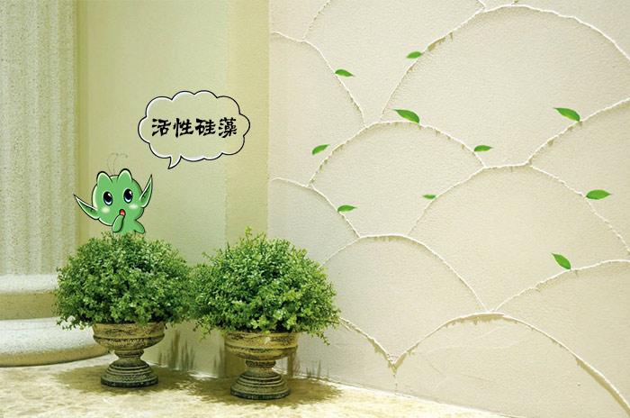 活性硅藻产品